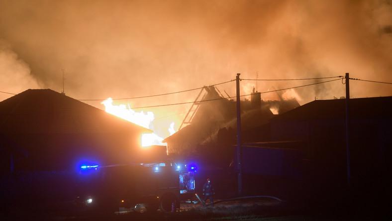 Z miejsca zdarzenia ewakuowanych zostało ok. 20 osób. Strażacy ugasili pożary budynków, trwa kontrolowane wypalanie gazu. Po zakończeniu akcji gaśniczej i po skontrolowaniu miejsca pożaru zostanie ono przekazane służbom wyjaśniającym okoliczności zdarzenia. Rozszczelnieniu uległ gazociąg przesyłowy wysokiego ciśnienia DN 500 Poznań-Rogoźno. Służby eksploatacyjne operatora gazociągu, spółki Gaz-System odcięły miejsce nieszczelności. Na razie nie wiadomo, co mogło być przyczyną zdarzenia. Według wstępnych ustaleń w miejscu rozszczelnienia nie były prowadzone żadne prace ziemne.