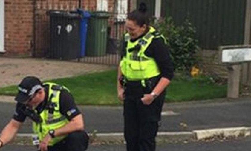 Nie uwierzysz za co policjanci zatrzymali tego malucha