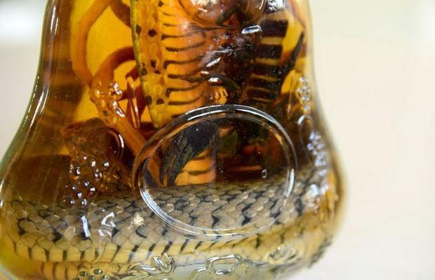 Egzotyczna nalewka za skorpionem