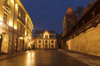 Muzeum Książąt Czartoryskich i Thesaurus Cracoviensis nominowane do Europejskiej Nagrody Muzealnej