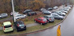Zróbcie tutaj parking