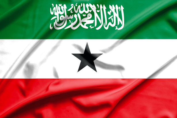 Flaga Somaliland