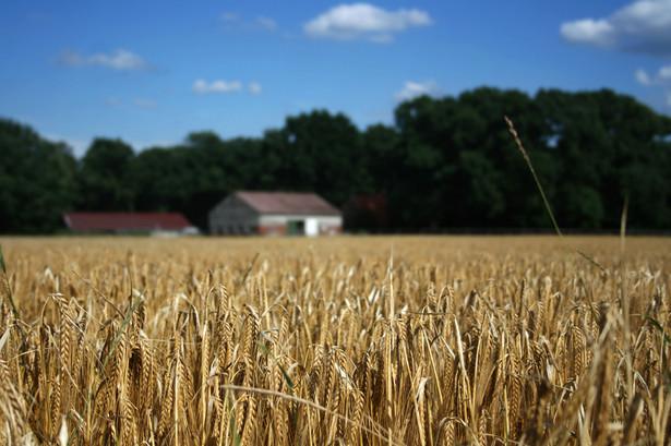 Uchwalono zmiany w ustawie o podatku rolnym, które zakazują łączenia ulgi inwestycyjnej w podatku rolnym z pomocą uzyskiwaną ze środków unijnych.