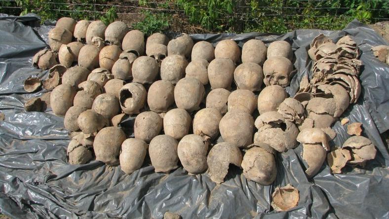 Tysiące ludzkich kości na budowie trasy ekspresowej pod Warszawą