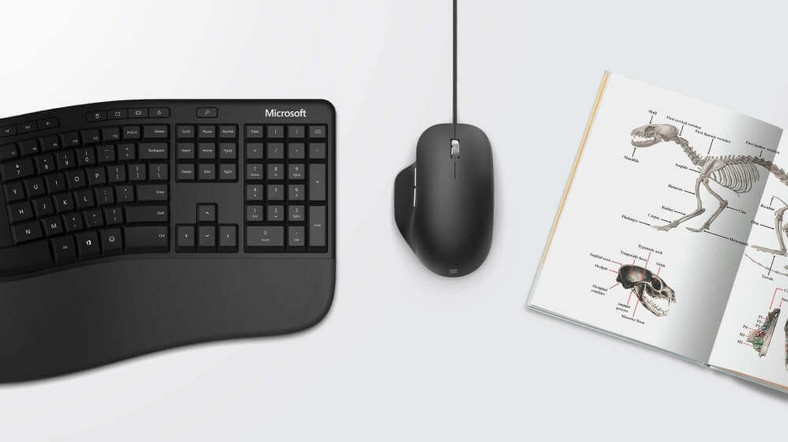 Microsoft Ergonomic Mouse