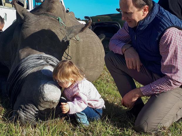 Ava ljubi nosoroga