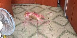 Pies leżał w czerwonej kałuży. Pan omal nie umarł na zawał