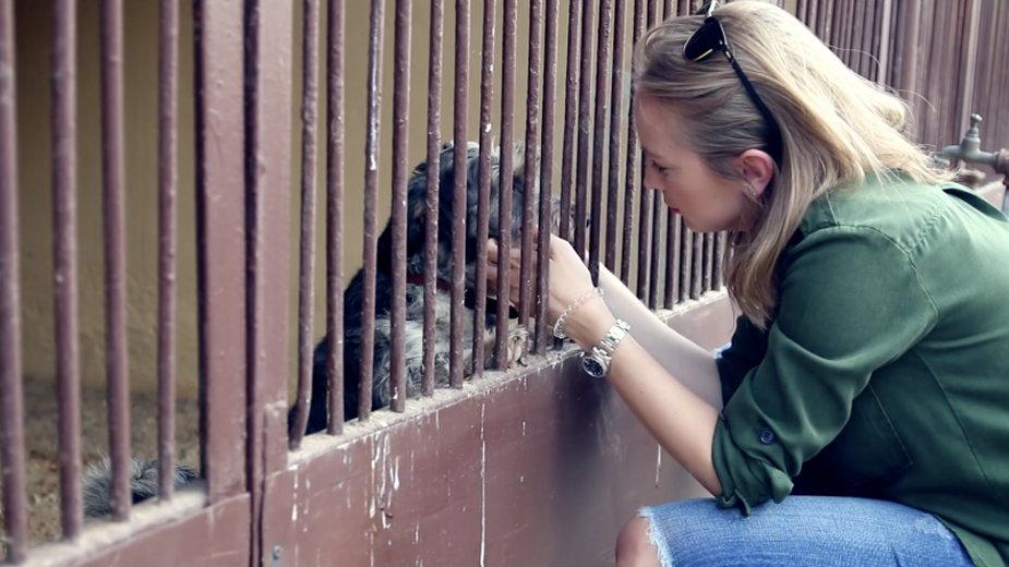 Edukacja rozwijająca empatię, może zmniejszyć skalę okrucieństwa wobec zwierząt