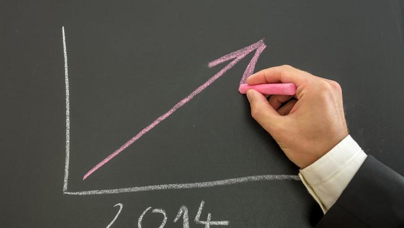 GUS podał dane o produkcji przemysłowej. Wzrost w 24 działach