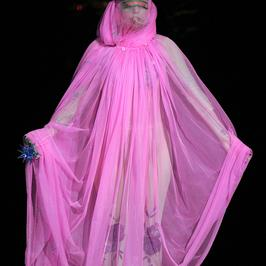 Lady Gaga wpadnie na twoją imprezę. Za jedyne 2 mln dolarów...