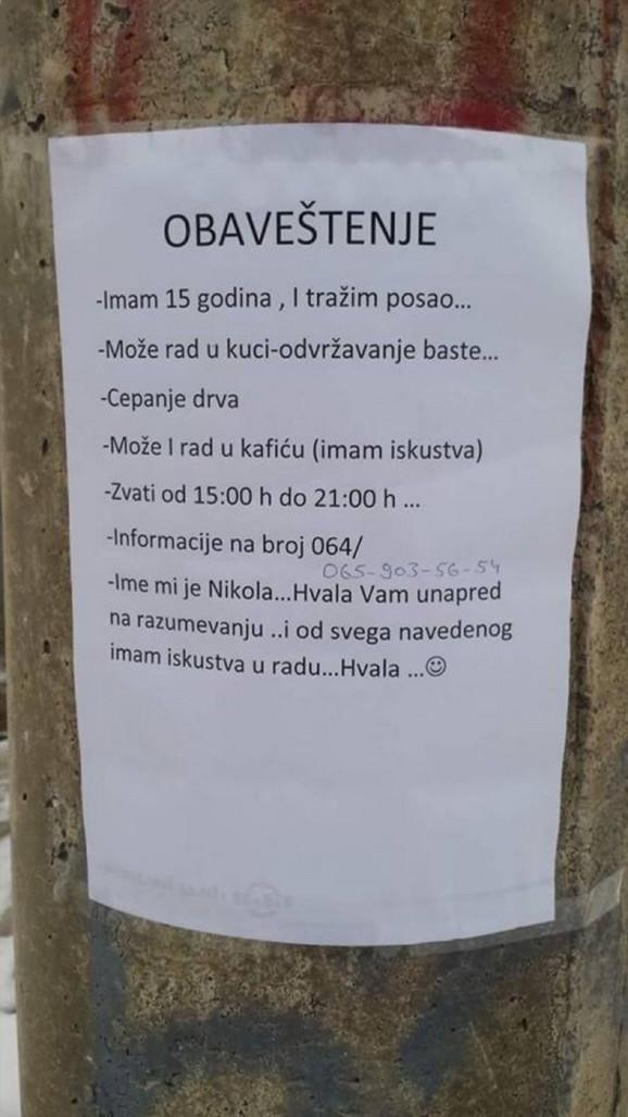 Oglas na kojem piše da petnaestogodišnji Nikola traži posao