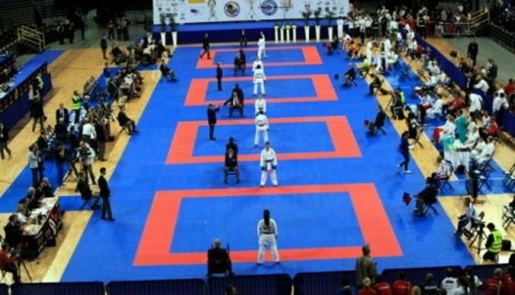 314098_86302phocathumblc2a9ewaldrothwm20100441f-karate