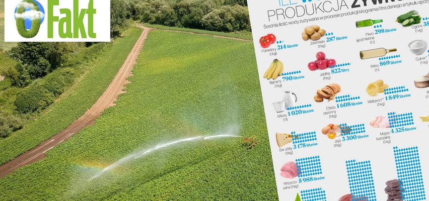 Ukryta prawda o produktach, które codziennie zjadamy. Może was zszokować