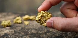Odkryli nowe złoża złota w Polsce!