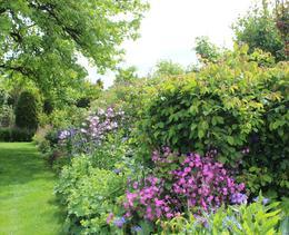 Ein privates Gartenparadies in Rapperswil-Jona SG