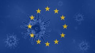 Europejski Fundusz Regeneracyjny. Propozycja [OPINIA]