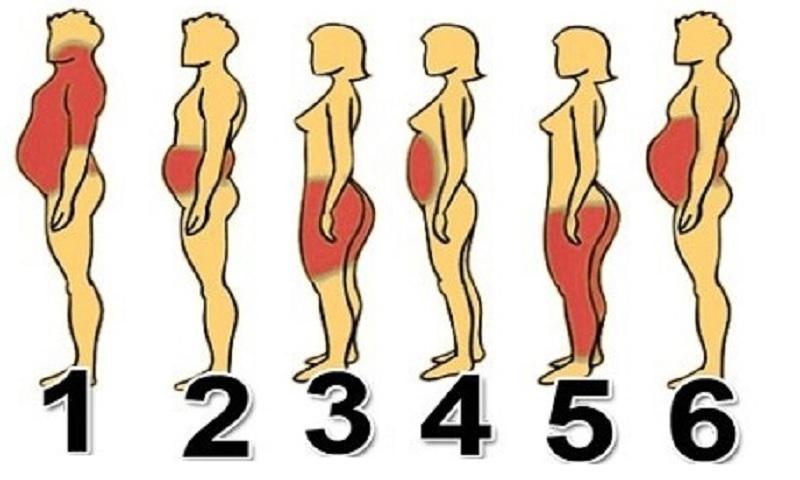 elhízás és fogyókúra)