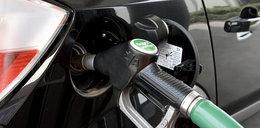Unia ogranicza biopaliwa. Rolnicy stracą na rzepaku?