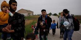 Polacy zarabiali krocie na transporcie imigrantów z Syrii do Europy