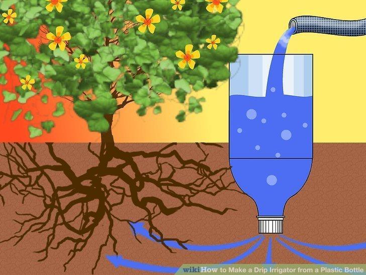 Sprytna Metoda Podlewania Roślin Idealna Na Upały I Na
