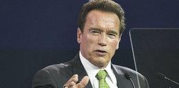 Schwarzenegger ostro do Trumpa: Stałeś tam jak ciapa!