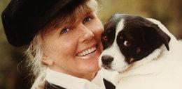 Wnuk Doris Day żre się z psami o pieniądze po babci