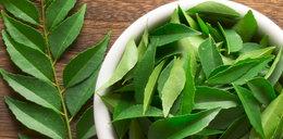 Ta roślina zwalcza łupież, gorączkę, a nawet artretyzm! Znasz ją?