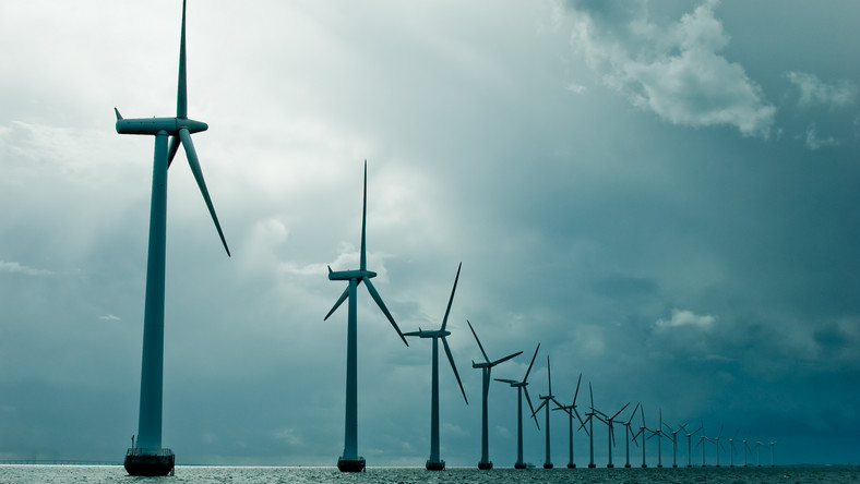 Rząd rezygnuje z zielonej energii