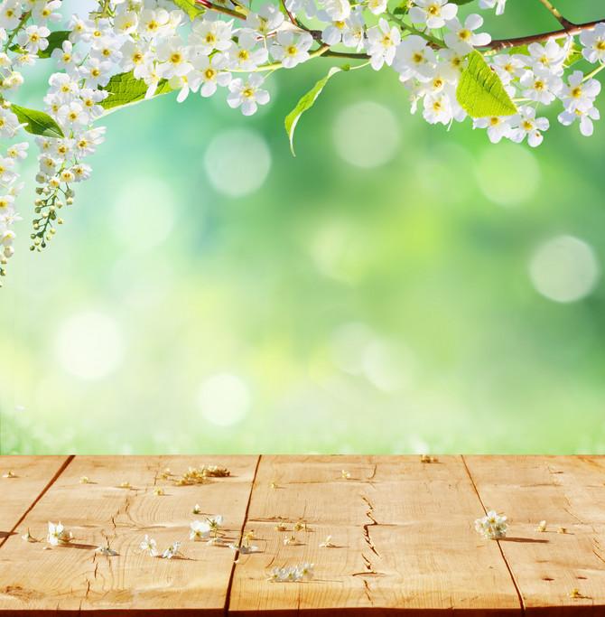 Pred vama su najtačnije prognoze za april, maj i jun