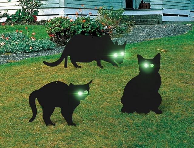 Strašilo u obliku mačke