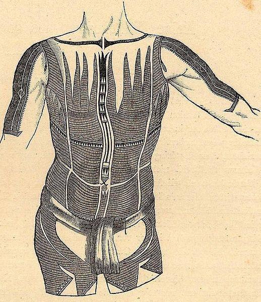 """Rysunek Jana Kubarego, prezentujący tatuaże typowe dla mężczyzn z archipelagu Karoliny, dostarczony do wydawanego przez Johna Cesara Godeffroya pisma naukowego """"Journal des Museum Godeffroy"""""""