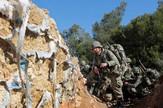 Turska vojska Afrin AP