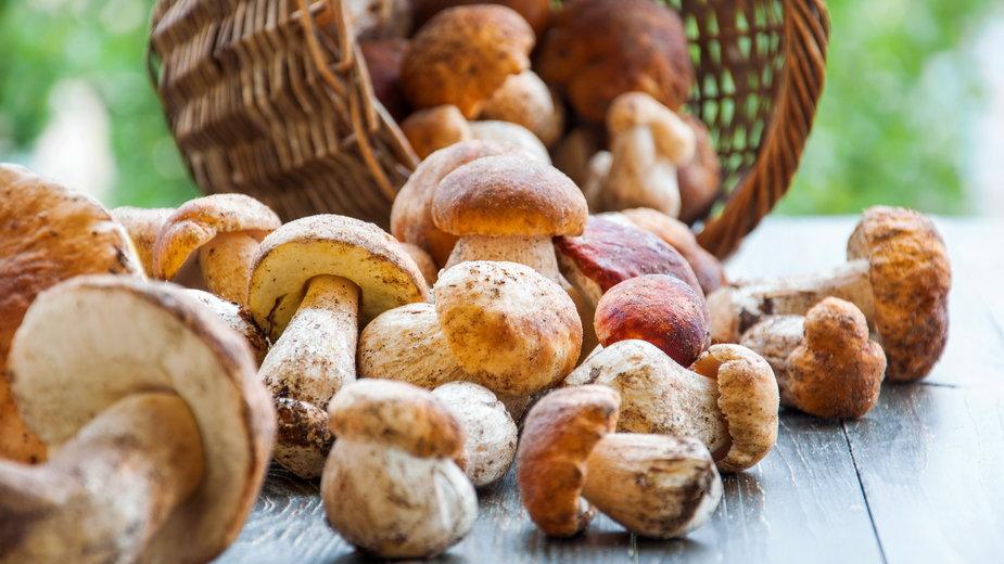 Grzyby – ważny element polskiej kuchni