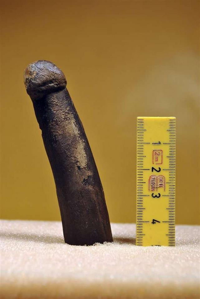 jest 7-calowy duży penis