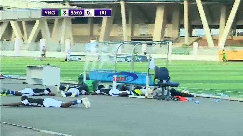 Panika podczas meczu. Piłkarzy zaatakowały pszczoły