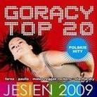 """Różni Wykonawcy - """"Gorący Top 20 Jesień 2009 Polskie Hity"""""""