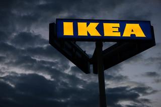 Czy Ikea będzie otwarta? Jakie obostrzenia będą obowiązywać w handlu [WYJAŚNIAMY]