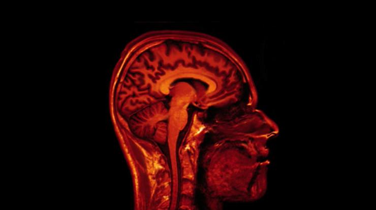 2045 budućnost02 mozak skener screenshot Vimeo JonO