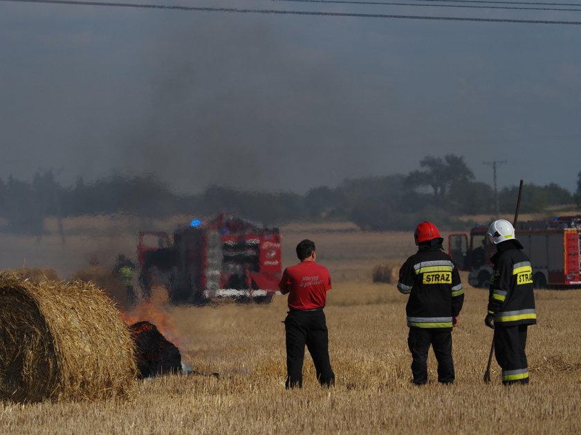 Podpalacz grasuje w Łodzi? Pożar pola na Górnej