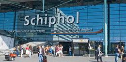 Polacy uwięzieni na lotnisku w Amsterdamie. Wszystko przez konie