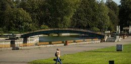 Park Śląski będzie jeszcze piękniejszy