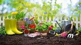 Marzec w ogrodzie - pora na wiosnę!