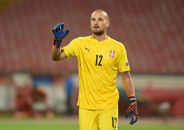 Predrag Rajković na nedavnom meču Srbija - Turska u Ligi nacija