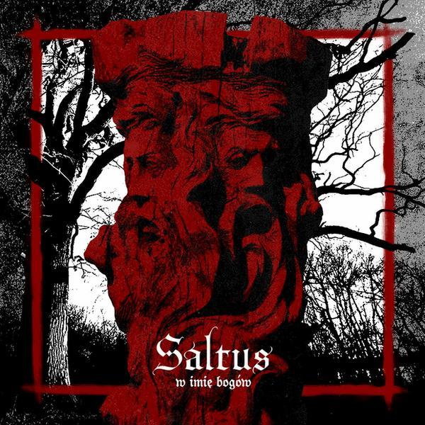 """Saltus – """"W imię bogów"""""""
