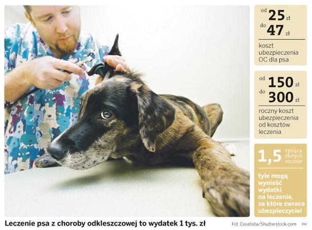 Leczenie psa z choroby odkleszczowej to wydatek 1 tys. zł