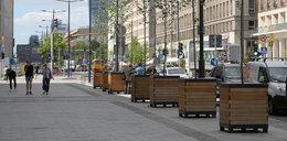 Miliony za zieleń na ulicy. Znikają kontrowersyjne donice