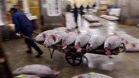 Najsłynniejszy targ rybny w Tokio zmienia lokalizację