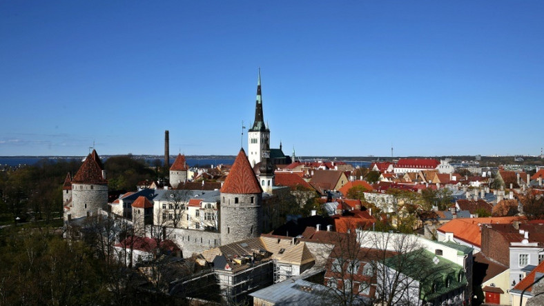 Years of tight spending under previous governments means Estonia has the EU's lowest debt-to-GDP ratio -- but many rural citizens feel left behind and Helme's rhetoric has struck a chord with some