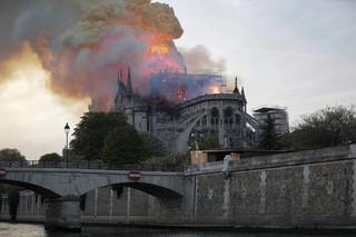 Płonąca katedra Notre Dame, czyli karta z kalendarza polskiego internetu [FELIETON]
