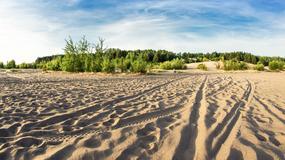 Największa pustynia w Europie jest w Polsce!